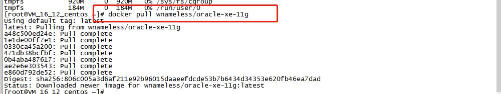 Oracle 11g Docker Image